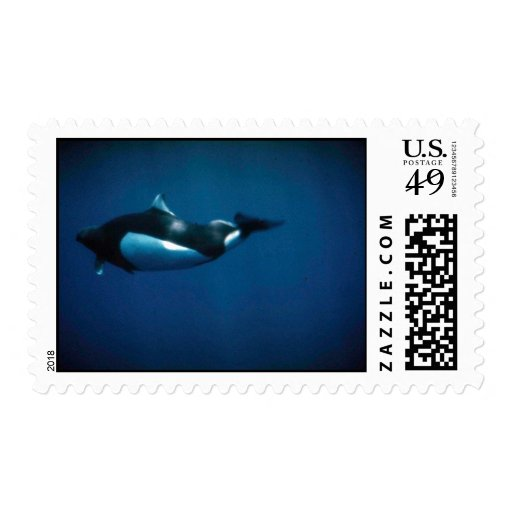 Dall's porpoise postage stamps