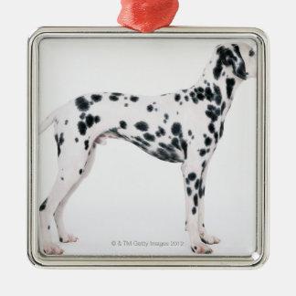 Dalmatian 3 metal ornament
