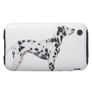 Dalmatian 3 tough iPhone 3 carcasa