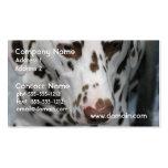 dalmatian-40.jpg plantillas de tarjeta de negocio