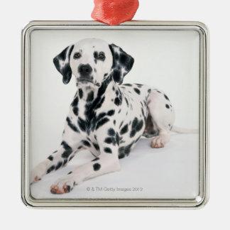Dalmatian 4 metal ornament