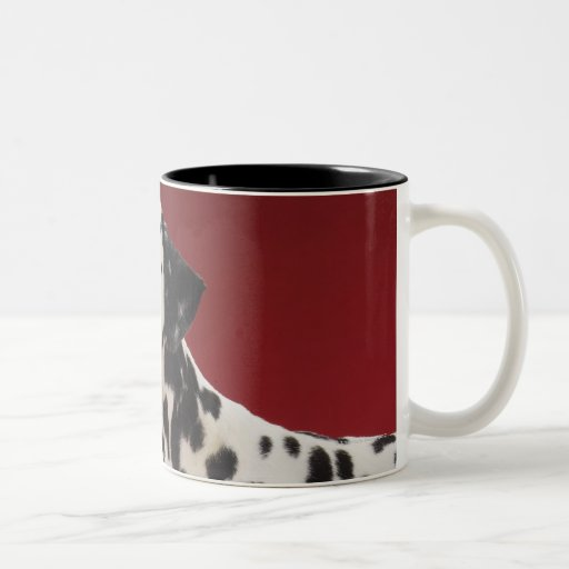 Dalmatian 6 tazas