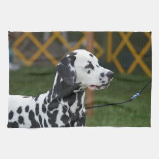 Dalmatian adorable toalla de mano