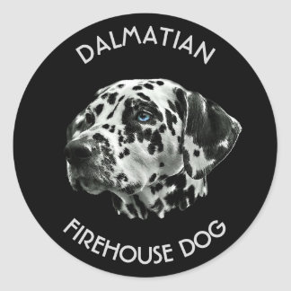 Dalmatian Black And White Firehouse Dog Classic Round Sticker
