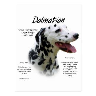 Dalmatian (blk) History Design Postcard