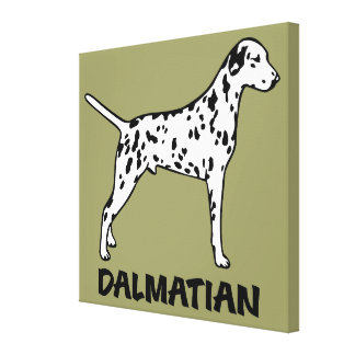 Dalmatian Gallery Wrapped Canvas