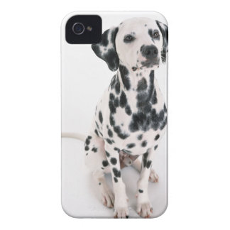 Dalmatian Case-Mate iPhone 4 Case