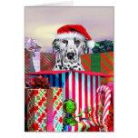 Dalmatian Christmas Surprise Greeting Cards