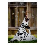 Dalmatian con las burbujas tarjeta