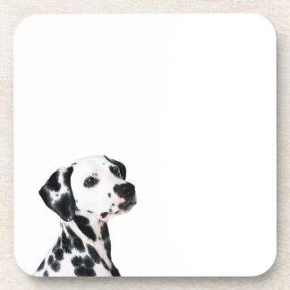 Dalmatian Cork Coaster