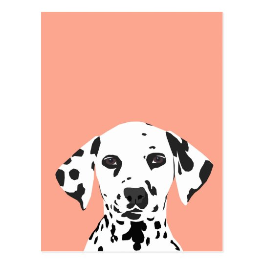 Dalmatian Cute Dog Illustration For Dog Lover Postcard Zazzle Com