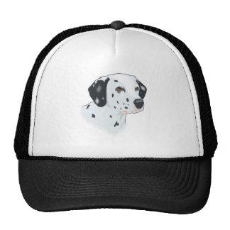 Dalmatian del bebé gorras de camionero
