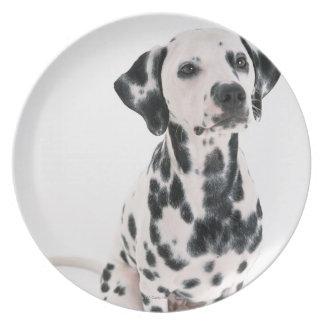 Dalmatian Dinner Plate