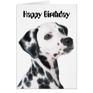 Dalmatian dog beautiful photo custom birthday card