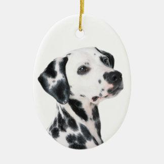 Dalmatian dog beautiful photo, gift ornaments