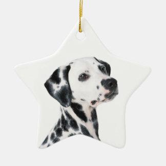 Dalmatian dog beautiful photo, gift christmas tree ornament