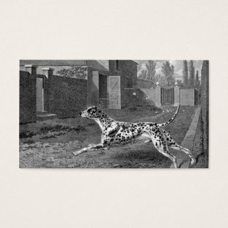 Dalmatian Dog Vintage Drawing Business Card