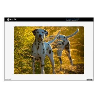 "Dalmatian Dogs 15"" Laptop for PC and Mac Skin"