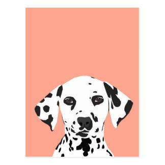 Dalmatian - ejemplo lindo del perro para el amante postal