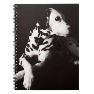 Dalmatian en blanco y negro libretas