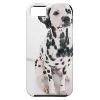Dalmatian iPhone 5 Case-Mate Protectores