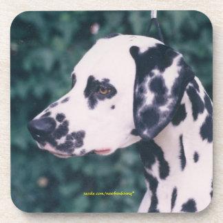 Dalmatian Headstudy Coasters