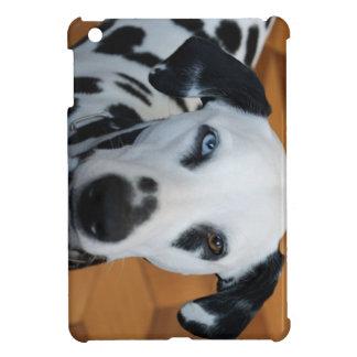 Dalmatian lindo iPad mini protector
