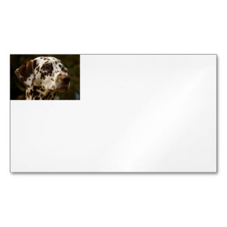 dalmatian-liver.png magnetic business card