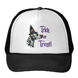Dalmatian (liver) Trick Mesh Hats