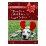 Dalmatian Miss The Train Red Greeting Cards