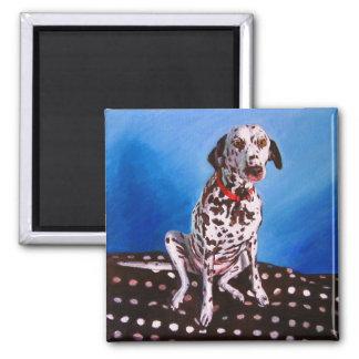 Dalmatian on spotty cushion 2011 magnet