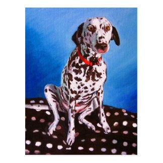 Dalmatian on spotty cushion 2011 postcard