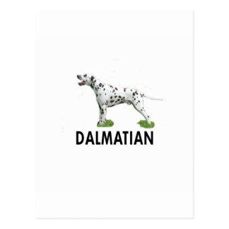 Dalmatian Postales