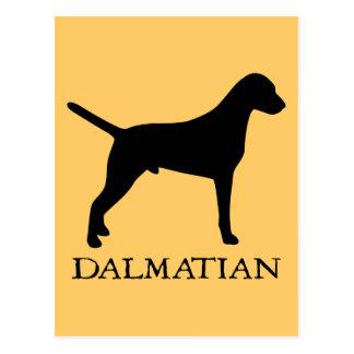 Dalmatian Post Card