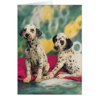 Dalmatian Puppies Card