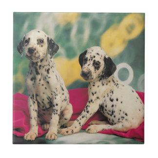 Dalmatian Puppies Ceramic Tile