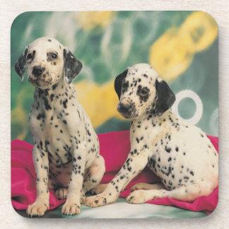 Dalmatian Puppies Coaster