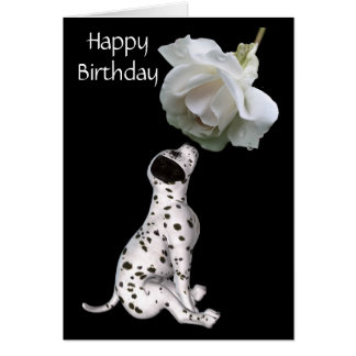 Dalmatian Puppy And White Rose Birthday Card