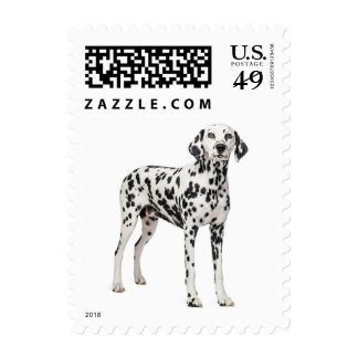 Dalmatian Puppy Dog Black & White Spotted Fire Dog Postage