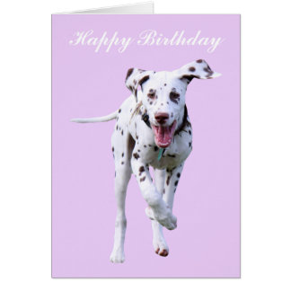 Dalmatian puppy dog happy birthday card
