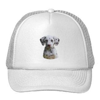 Dalmatian puppy dog photo trucker hat