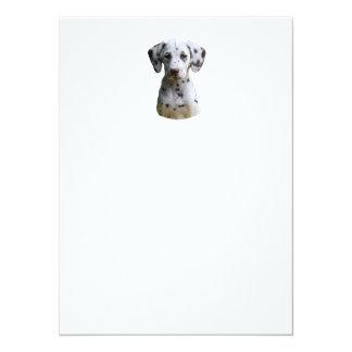 Dalmatian puppy dog photo 5.5x7.5 paper invitation card