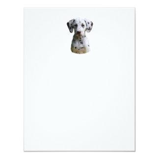 Dalmatian puppy dog photo 4.25x5.5 paper invitation card