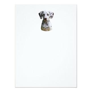 Dalmatian puppy dog photo 6.5x8.75 paper invitation card