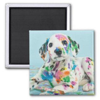 Dalmatian Puppy Magnet