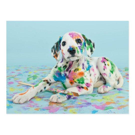 Dalmatian Puppy Postcard Zazzlecom