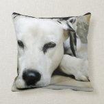 Dalmatian Resting Pillow