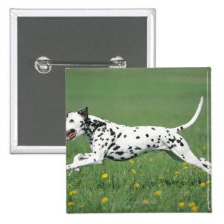 Dalmatian Running Pinback Button