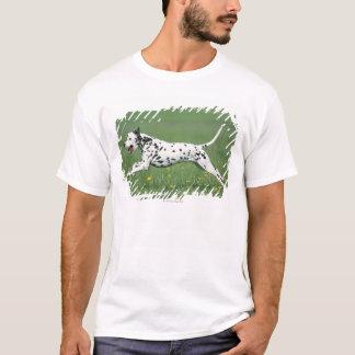 Dalmatian Running T-Shirt