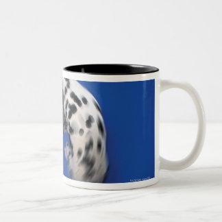 Dalmatian spinning Two-Tone coffee mug